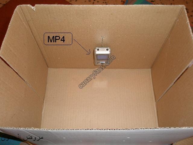 طريقتي في صنع صندوق تسميع للحسون بسيط وفعال ضبط جودة المواضيع