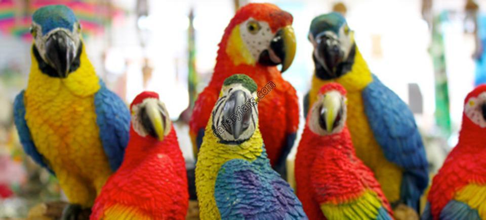 موسوعة طيور القفص و السلاكة جزء1  – مترجم